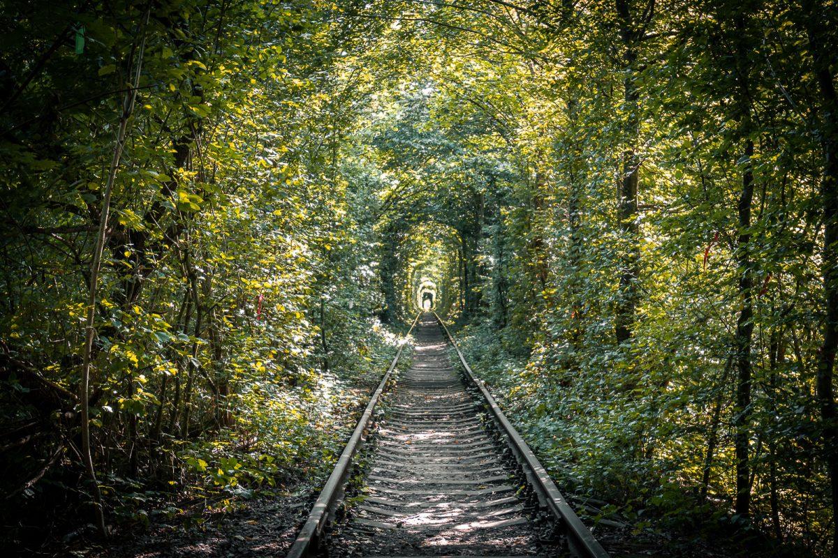 túnel del amor rivne ucrania